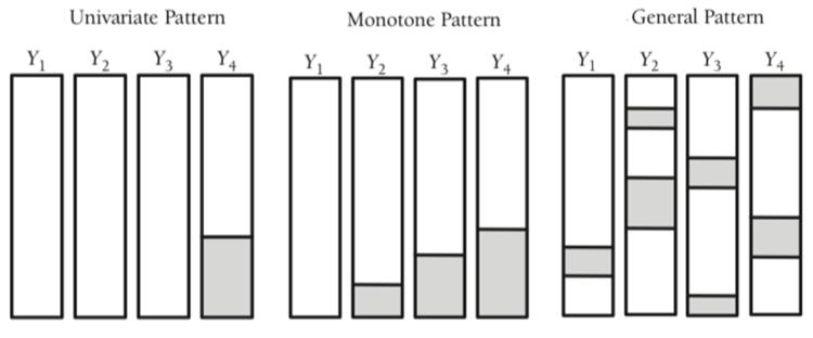 图 1:常见缺失数据模式