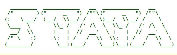 Stata连享会-Stata Logo-字符画005